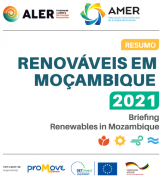 Briefing: Renewables in Mozambique 2021