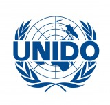 UNIDO commitment on training on renewable energies